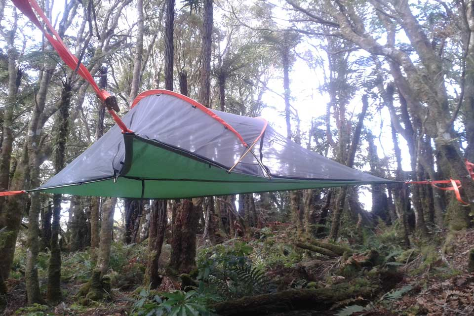 Tree tent in the Pupu Rangi Nature Sanctuary